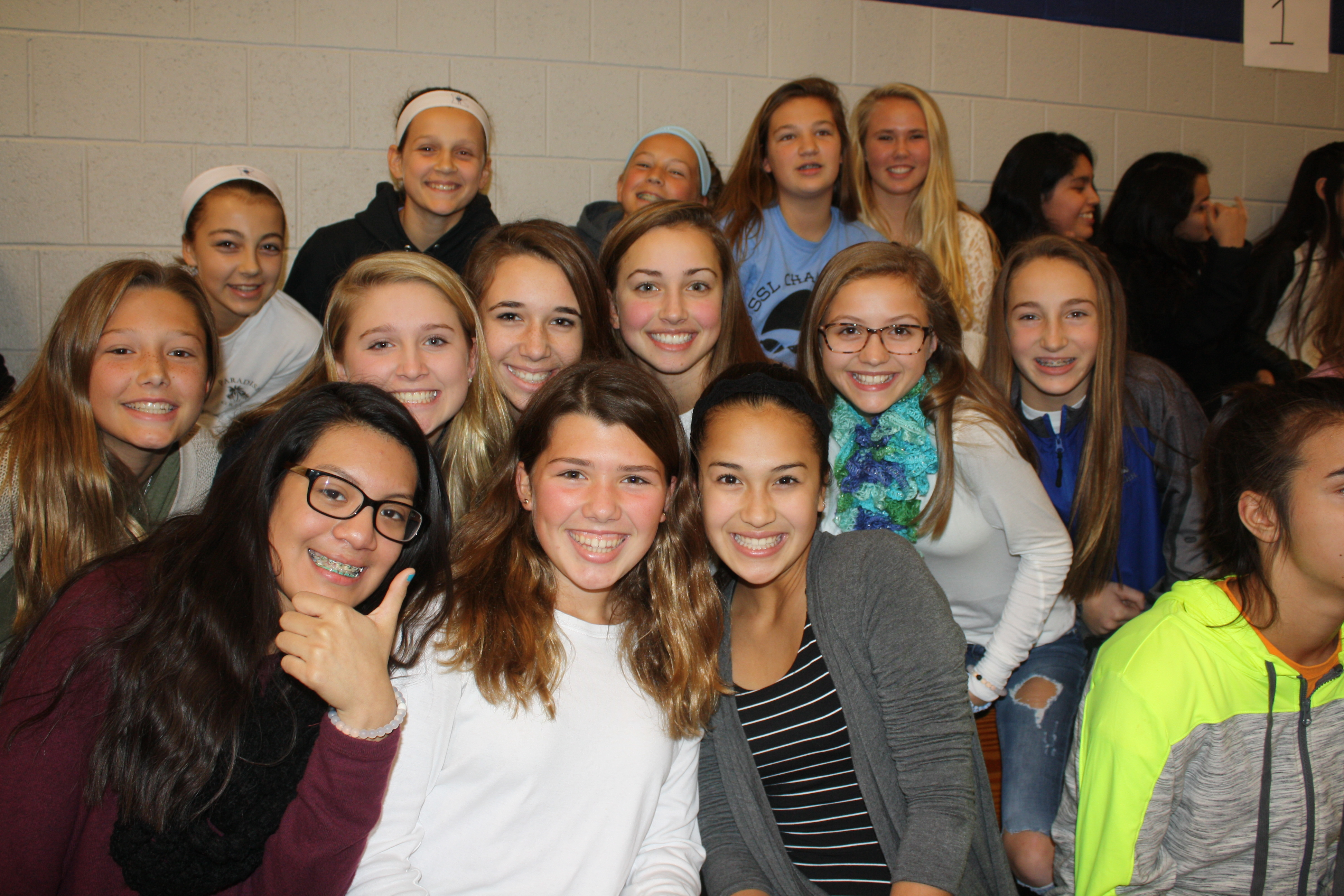 fans at the volleyball game